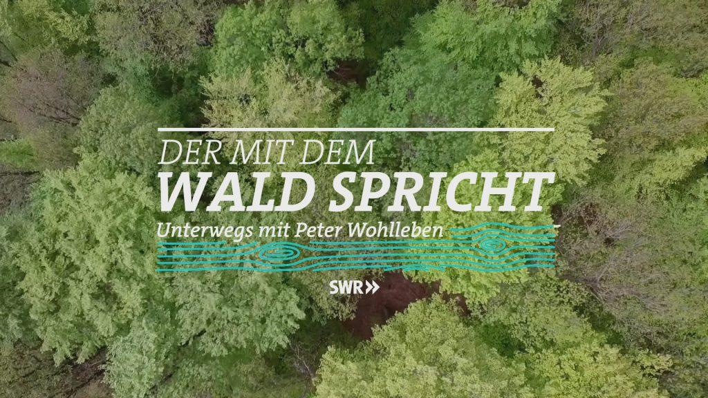 SWR-Sendung Der mit dem Wald spricht, Unterwegs mit Peter Wohlleben